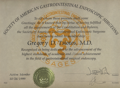 Society of American Gastrointestinal Endoscopic Surgeons